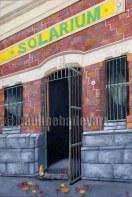 Banana Alley _ 60 x 90cm_2010